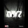 DayZ PC